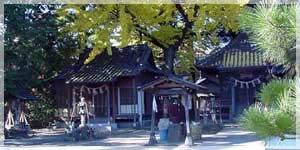 takobutai1